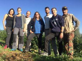 Oliven Ernte Team 3 Toscana | Casa Ray Poggio Agliai