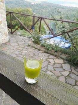 Glas mit Olivenöl | Casa Ray Poggio Agliai