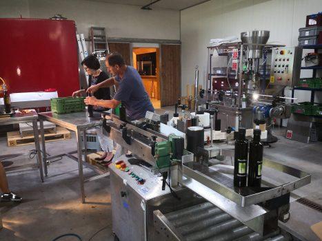 Olivenöl Abfüllung | Casa Ray Poggio Agliai