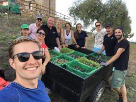 Oliven Ernteteam mit vollen Kisten | Casa Ray Poggio Agliai